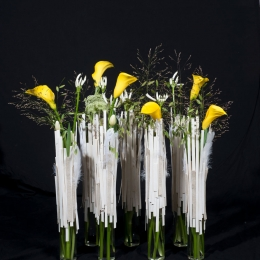 VBW-flower-time-circleDSC_3263
