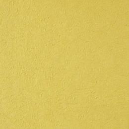 1101.9464.50 handmade paper swatch